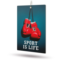 Ароматизатор AVS APS-009 Sport is Life (аром. Fire Ice/Огненный лёд)