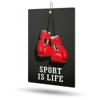 Ароматизатор AVS APS-019 Sport is Life (аром. Brutal/Брутал)