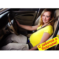 """Приспособление ремня безопасности для беременных """"ФЭСТ"""" замша 2470/2"""